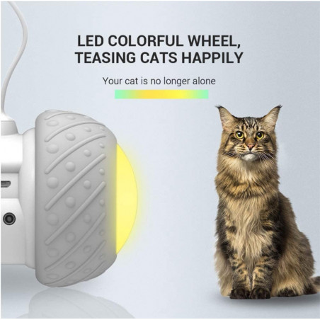 RALTHY, the toy robot for cats