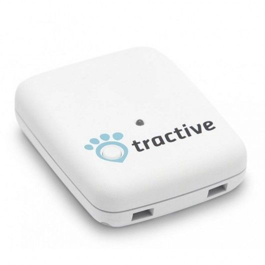 Tractive, the GPS tracker for domestic pets.