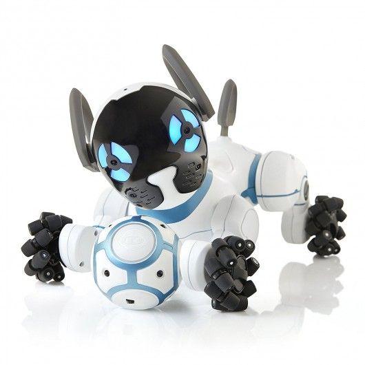 Chip, le chien robot intelligent