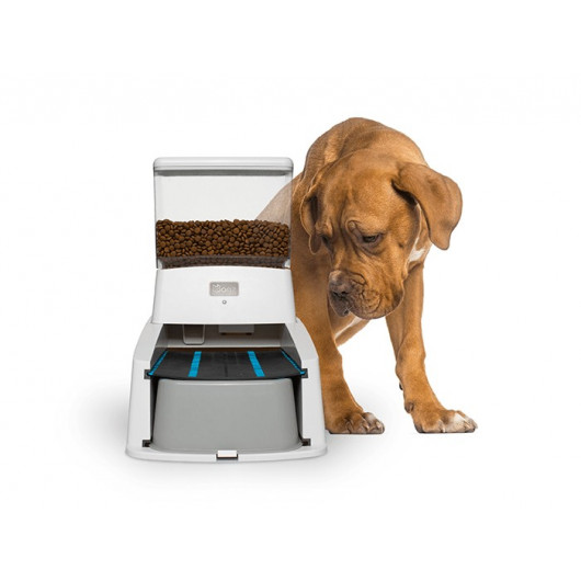 Wagz, the smart, connected dog feeder