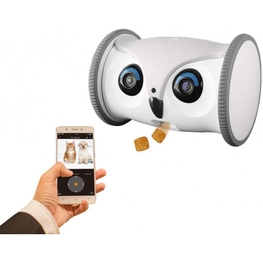 Skymee Owl Robot, the interactive robot for your dog