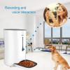 Wopet Automatic Pet Feeder, le distributeur programmable